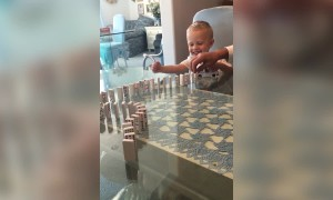 Grandpa gets Grandson Laughing with Dominoes