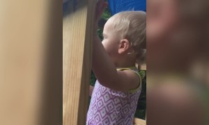 Cute Baby Girl is a Singing Star!