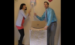 Gender Reveal Fails
