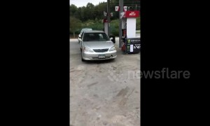 Owner runs out of US gas station to find impatient dog honking his car