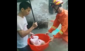 Firefighters rescue residents trapped by floods in China's Guangdong