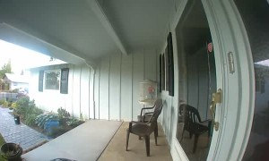 Pulling a Prank on the Porch Camera