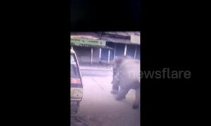 Security cam captures moment rampaging elephant rams tuk-tuk