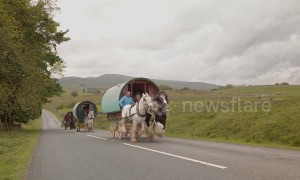 Travellers drive their horse-drawn caravans up steep hill on their way to Appleby Horse Fair