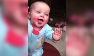 This Baby is aDOORable!