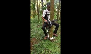 Farmer in India creates 'tree bike' to race up 100-foot-tall trees