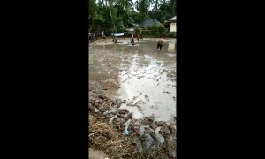 'That won't wash out!' School kids play mud soccer in Indonesia