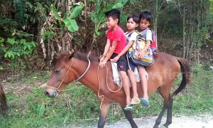 Students at remote village in the Philippines forced to ride horses to school every day