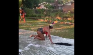 Us woman crawls on slip and slide to retrieve wig after it drops off