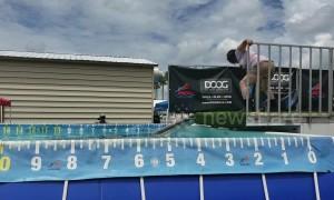 Dog makes tiny splash during Florida dock diving competition