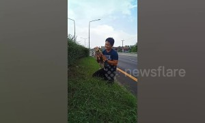 Driver rescues puppy from central reservation of a motorway in Thailand