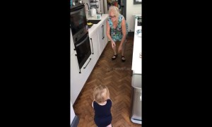 """What's happened to Grandma?"" Toddler unmoved by twerking UK gran"