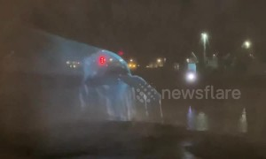Stunning holographic humpback whale projected onto Liverpool fountain