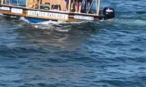 Floating Tiki Bar Stuns Onlookers