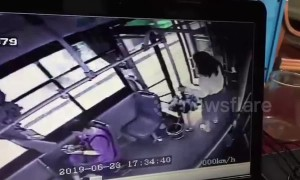 Chinese girl jumps out of moving bus after realising she boarded the wrong one