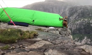 BASE Jumping in a Walrus Onesie