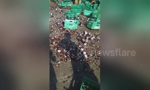 Locals scramble to collect beer bottles that fell off lorry on road in the Philippines