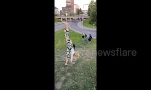 A Woman attempts a cartwheel gone wrong