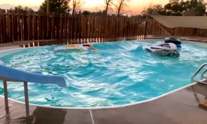 California earthquake creates waves in family swimming pool