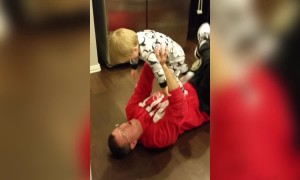 Tot Boy Plays in Funniest Way
