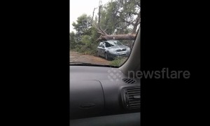 Severe hailstorms batter streets in northern Greece seeing trees topple onto cars