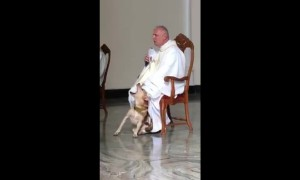 Lost dog crashes Sunday Mass, but Priest's perfect reaction has millions cheering