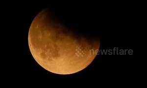 Apollo 11 moon landing anniversary sees partial lunar eclipse over London