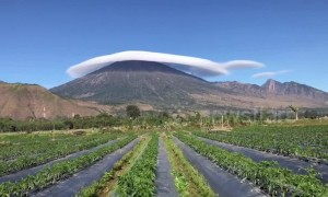 Spectacular moment long flat cloud blankets Indonesian volcano peak 'like a hat'