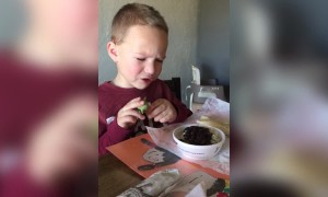 Picky Kid Will Only Eat with a Spork