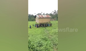 Community effort! Filipino villagers help neighbour carry house to new location