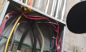 Electrician Teaches Electrifying Lesson
