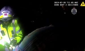 Tourist helps police make an arrest