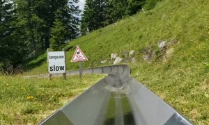 Seeing Switzerland from a Toboggan