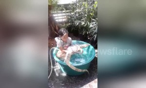 Little girl enjoys bath with pet lizard at Thai home