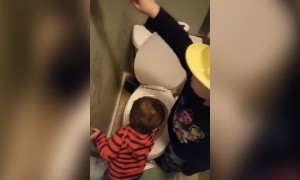 Potty Painters