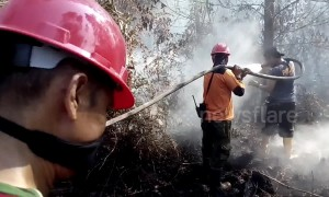 Indonesia battles forest fires to prevent return of SE Asia 'haze' crisis