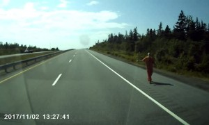 Hazardous Hitchhiker on the Highway