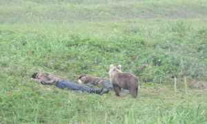 Curious Cub Startles Sleeping Men