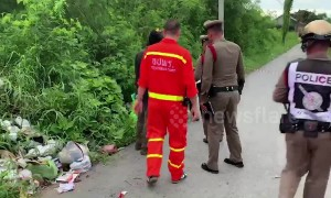 Stray dogs find lifeless abandoned baby on Thai roadside