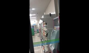 Rats seen running over the food shelves at Japanese grocery store