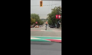 Cyclist filmed 'surfing' on his BMX in middle of Canadian road