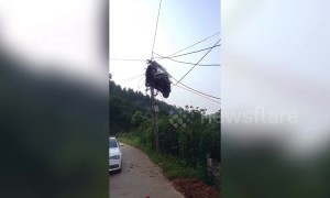 Scooter transported on truck ends up tangled in power lines above road in China