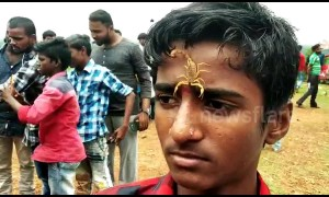 Watch this bizarre Indian festival where devotees place deadly scorpions in their MOUTHS