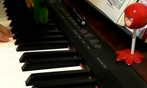 Bird Joins in on Piano Playing
