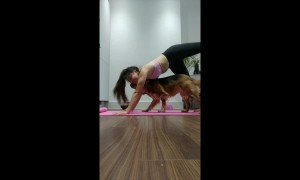 Woman and dog do adorable tandem yoga