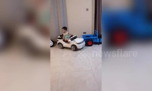Four-year-old boy shows off incredible parallel parking skills with toy car in China