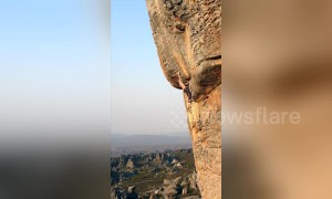 Hang on tight! Man shows impressive barehanded grip on South African cliff face with no safety equipment