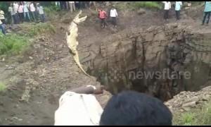Brave man descends 40-foot well to rescue crocodile