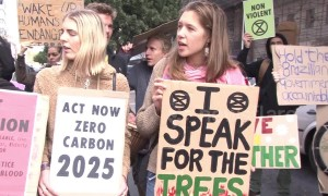 Activists gather outside Brazilian embassy in South Africa to protest destruction of the Amazon rainforest