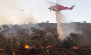 Firefighters attempt to contain Los Angeles brush fire